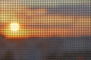 window screen repair Phoenix AZ